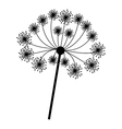 silhouette dandelion with stem and pistil closeup vector image vector image