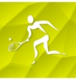 Tennis Icon vector image