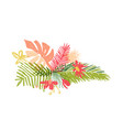tropical hand drawn flower leaf aloha summer vector image vector image