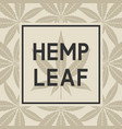 black frame against cannabis leaves vector image vector image