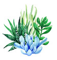 bright watercolor plants tiny color bouquet vector image vector image
