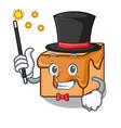 magician caramel candies mascot cartoon vector image vector image