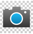 photo camera gradient icon vector image