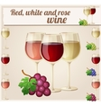 Red white and rose wine in glasses Detailed vector image
