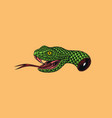 severed head a snake for tattoo or label vector image