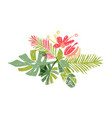 tropical colorful leaf bouquet doodle style vector image vector image