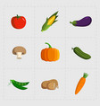 colorful vegetable icon set on white background vector image vector image