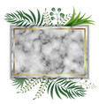decorative frame with plants on marble vector image vector image