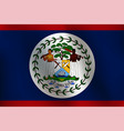 flag of belize - vector image vector image