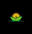 fresh fruit organic nature logo vector image