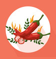 hot chili peppers icon detailed vector image