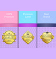 premium award quality offer guarantee promo labels vector image