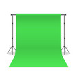 realistic detailed 3d photo studio green vector image vector image