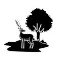 reindeer animal cartoon vector image