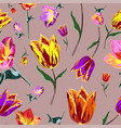 seamless colored tulips vector image
