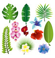 set colorful tropical vector image vector image