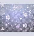 winter new year background with christmas vector image