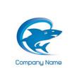 blue shark logo vector image