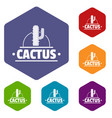 cactus icons hexahedron vector image vector image
