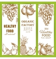 Healthy natural organic fruit food sketch banners vector image vector image