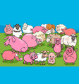 pigs and sheep farm animal characters group vector image vector image