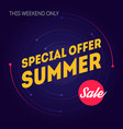 summer sale banner template special offer this vector image vector image
