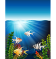 A group of fishes underwater vector image vector image