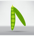 green pea pod isolated icon vector image