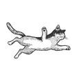 jumping cat flies sketch engraving vector image vector image
