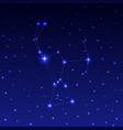 the constellation of orion vector image vector image