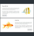 butterfly and gold fish landing page with text vector image