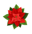 christmas red poinsettia vector image