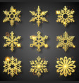 collection of gold glitter snowflakes nine vector image