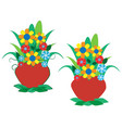 colorful flowers in a pot vector image vector image