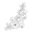 drawing flowers vector image vector image