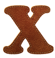 Leather textured letter X vector image vector image