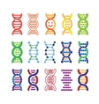 Set of colorful DNA icons vector image