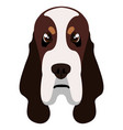 basset hound avatar vector image vector image