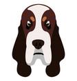 basset hound avatar vector image