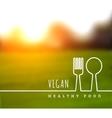 concept natural vegetarian health food vector image vector image