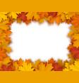 frame fallen maple leaves vector image vector image