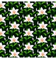 pattern with lily flowers vector image