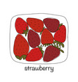 portion of strawberries sketch for your design vector image