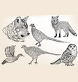 set detailed hand drawn animals vector image