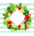 summer background with red parrot vector image vector image