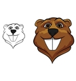 Beaver mascot vector image