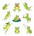 cute green frog jumping sitting on leaf