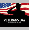 memorial day soldier on background of american vector image vector image