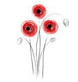red poppies concept vector image vector image