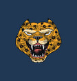 screaming mad leopard or panther for tattoo or vector image